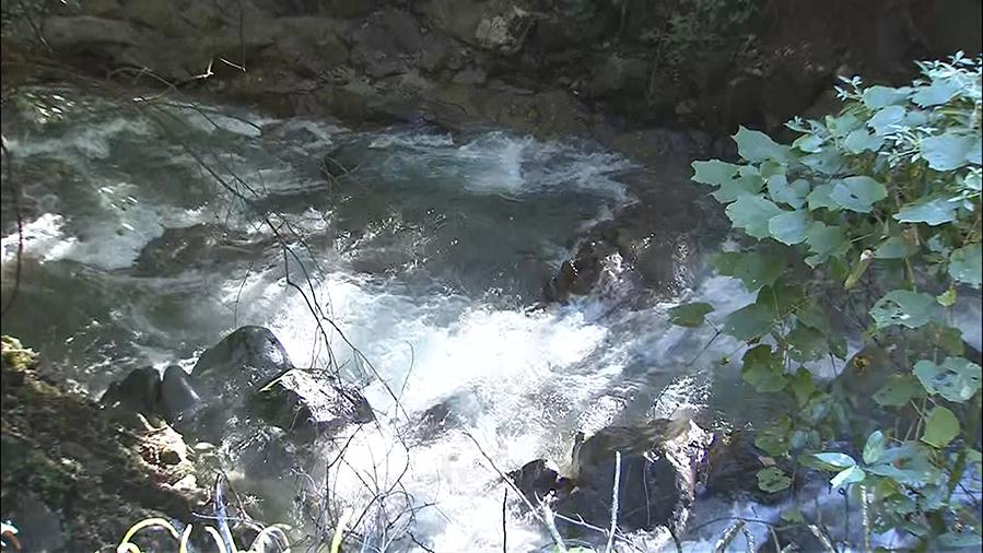 丹波山村で遭難の男女2人か、遺体発見 | UTYテレビ山梨